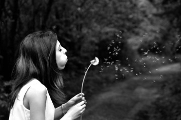 girl-dandelion-wish-summer-39485